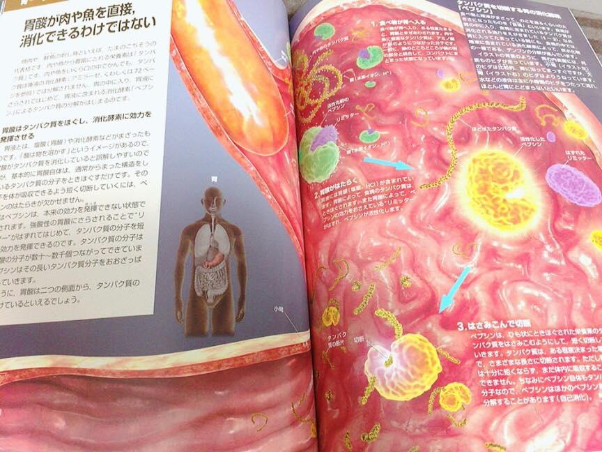 栄養学の本