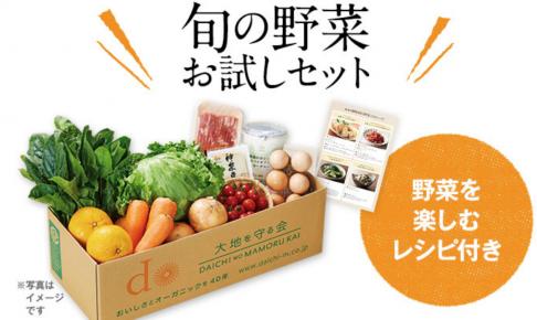 大地を守る会の宅配野菜セット